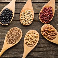 השריית קיטניות אגוזים וזרעים